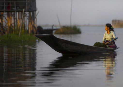 Woman rowing in a boat, Inle lake, Myanmar