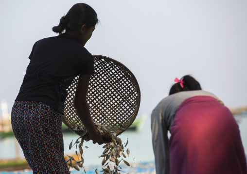 Women Putting Dried Fish On The Floor, Ngapali, Myanmar