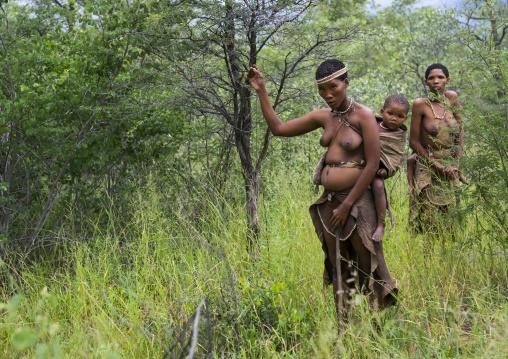 Bushman Woman In The Bush, Tsumkwe, Namibia