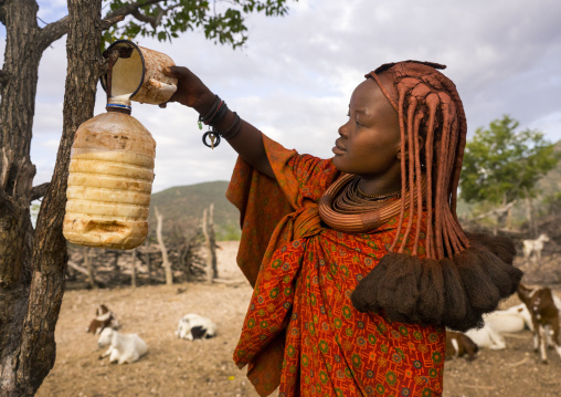 Himba Woman Collecting Milk, Epupa, Namibia