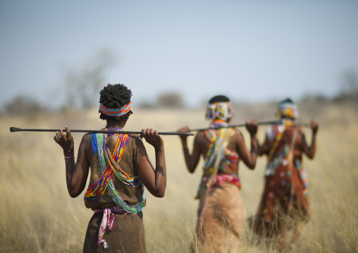 San Women Walking In The Bush, Namibia