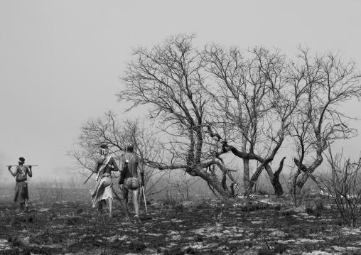 Bushmen In The Bush After A Fire, Tsumkwe, Namibia