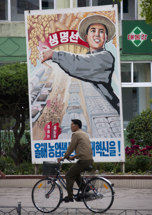 North Korean man riding a bicycle in front of a propaganda billboard depicting a happy peasant, North Hwanghae Province, Kaesong, North Korea