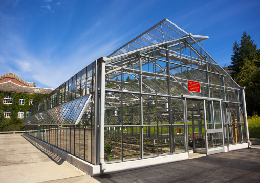 Greenhouse in agriculture university, South Hamgyong Province, Hamhung, North Korea