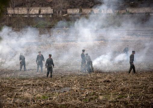 Slash and burn farming with North Korean soldiers, Pyongan Province, Pyongyang, North Korea