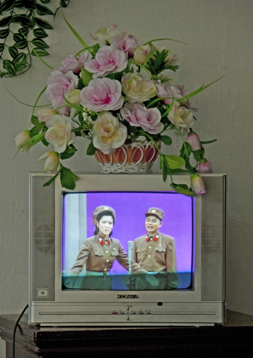 Plastic flowers on a television broadcasting a show with soldiers, Pyongan Province, Pyongyang, North Korea