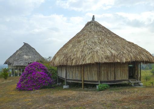 Panama, Darien Province, Meteti, Filo Del Tallo Lodge