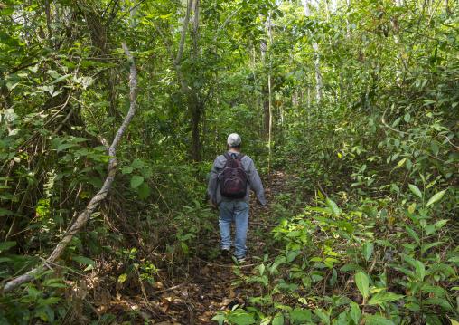 Panama, Darien Province, Filo Del Tallo, Trekking In Filo Del Tallo
