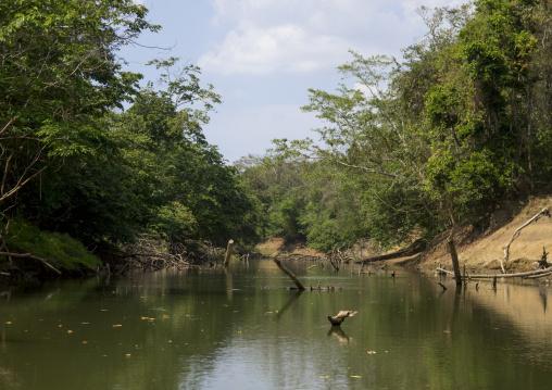 Panama, Darien Province, Alto Playona, Río Chucunaque