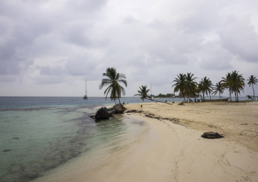 Panama, San Blas Islands, El Porvenir, White Sand Beach And Palm Trees In The San Blas Islands