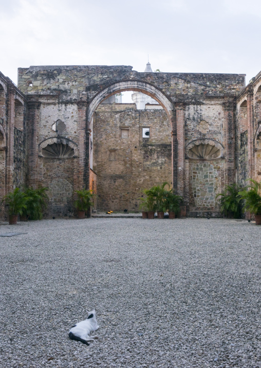 Panama, Province Of Panama, Panama City, Ruins Of Conception Nuns Convent At Panama Viejo