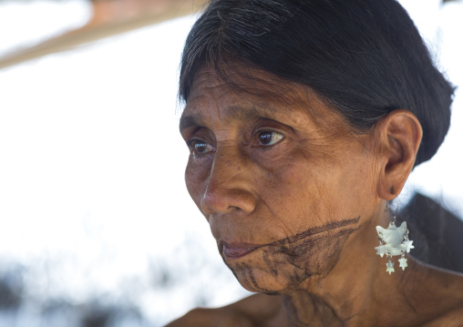 Panama, Darien Province, Bajo Chiquito, Woman Of The Native Indian Embera Tribe Portrait