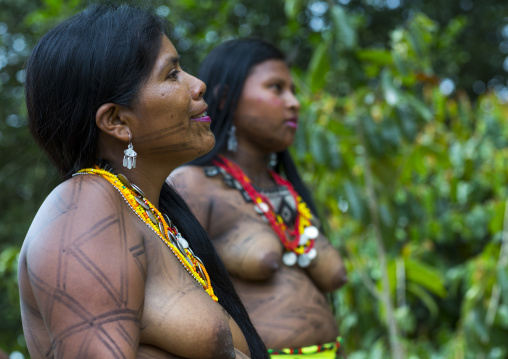 Panama, Darien Province, Bajo Chiquito, Women Of The Native Indian Embera Tribe