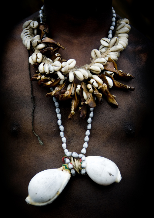 Shell amulets on warrior chest during a sing-sing, Western Highlands Province, Mount Hagen, Papua New Guinea