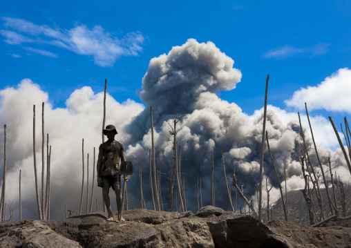 Man digging to find megapode birds eggs in Tavurvur volcano ashes, East New Britain Province, Rabaul, Papua New Guinea