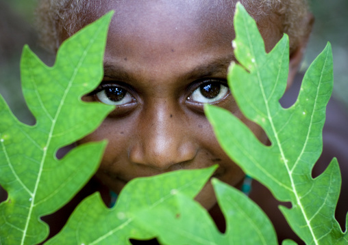 Portrait of a boy hiding behind green leaves, East New Britain Province, Rabaul, Papua New Guinea