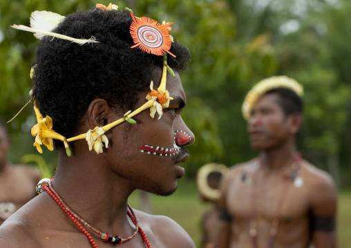 Tribal dancers with traditional clothing during a ceremony, Milne Bay Province, Trobriand Island, Papua New Guinea