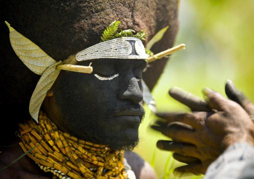 Enga kompian suli muli wearing a wig made with human hair, Western Highlands Province, Mount Hagen, Papua New Guinea