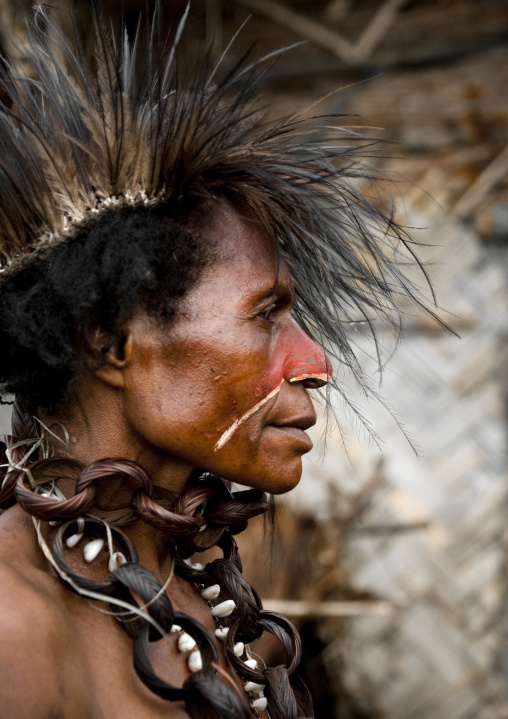 Profile of a chimbu tribe woman during mt hagen sing sing, Western Highlands Province, Mount Hagen, Papua New Guinea