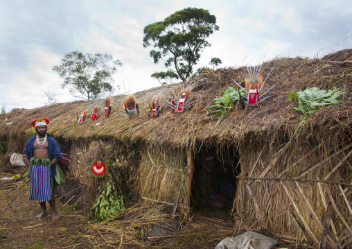 Headdresses on the roof of a highlander long house during a sing sing, Western Highlands Province, Mount Hagen, Papua New Guinea