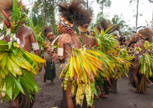 Chimbu tribe women during a Sing-sing, Western Highlands Province, Mount Hagen, Papua New Guinea