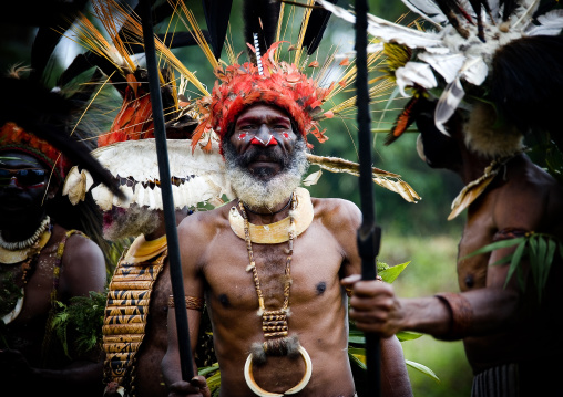 Chimbu tribe man with giant headdress made of eagle feathers during a sing sing , Western Highlands Province, Mount Hagen, Papua New Guinea