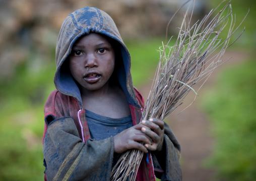 Rwandan boy collecting wood in the countryside, Lake Kivu, Ibwiwachu, Rwanda