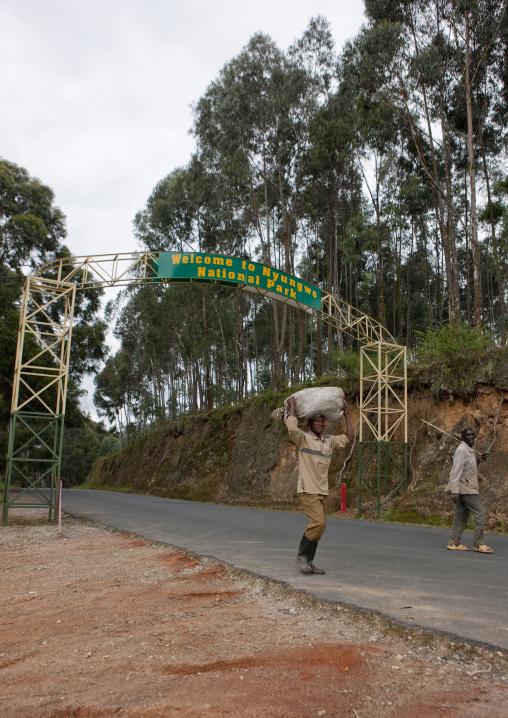 Uwinka canopee forest entrance gate, Nyungwe Forest National Park, Uwinka, Rwanda