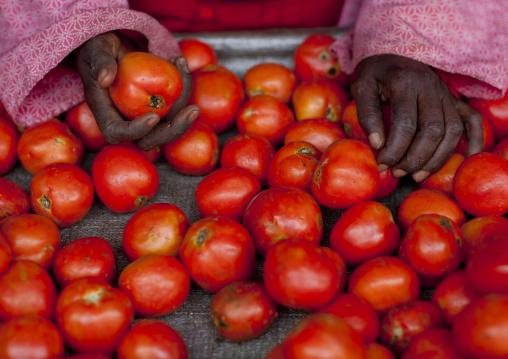 Woman selling tomatoes in the market, Kigali Province, Kigali, Rwanda