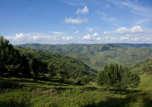 Shorongo hills, Kigali Province, Kigali, Rwanda