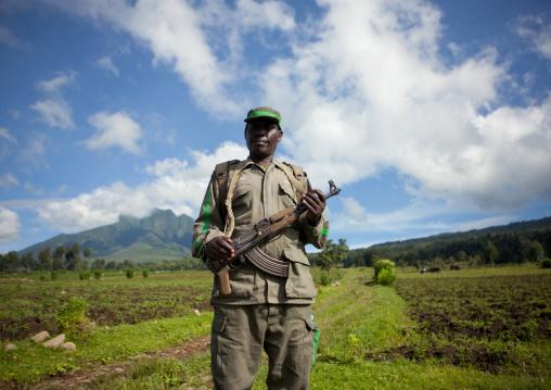 Guide with weapon in volcanoes national park, Northwest Province, Rehengeri, Rwanda