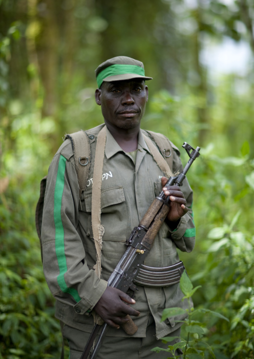 Guide with weapon in volcanoes national park, Northwest Province, Rehengeri, Rwanda