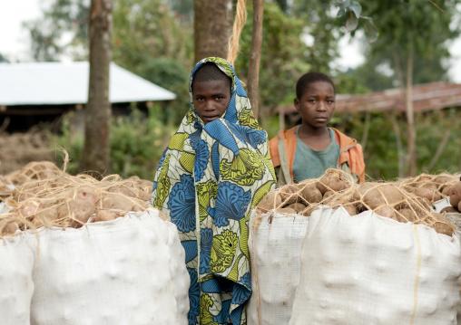 Rwandan children in the volcanoes national park, Northwest Province, Rehengeri, Rwanda