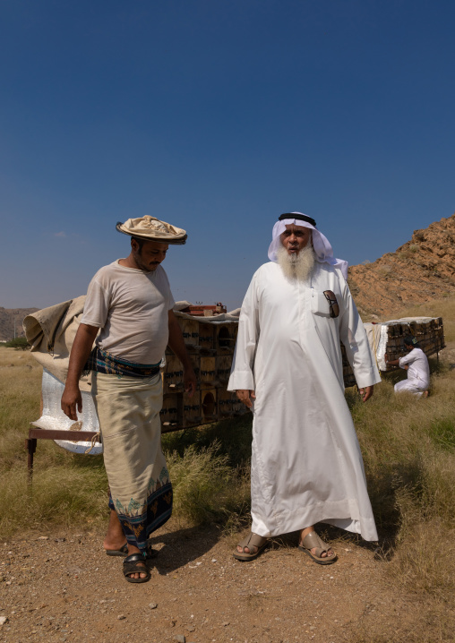 Saudi beekeepers working in the beehives, Jizan province, Addarb, Saudi Arabia