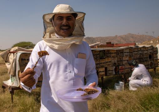 Saudi beekeeper working in the beehives, Jizan province, Addarb, Saudi Arabia