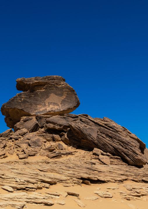 Life-sized camel petroglyph on a rock, Najran Province, Thar, Saudi Arabia