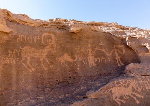 Petroglyphs rock art depicting humans and ibex, Najran Province, Thar, Saudi Arabia