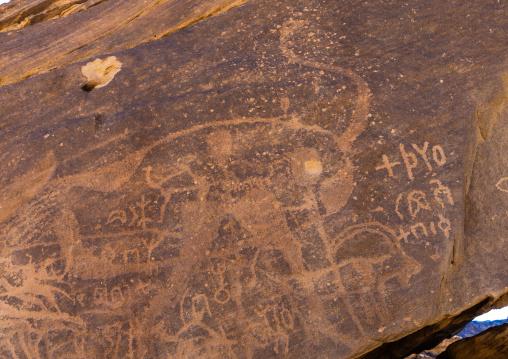 Petroglyphs rock art depicting an ostrich, Najran Province, Najd Khayran, Saudi Arabia