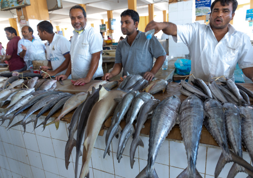 men selling fishes in the fish market, Jizan Province, Jizan, Saudi Arabia