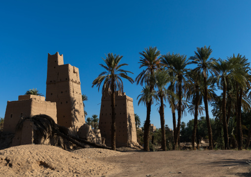 Traditional old mud houses in an oasis, Najran Province, Najran, Saudi Arabia