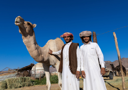 Saudi men in the camel market, Najran Province, Najran, Saudi Arabia