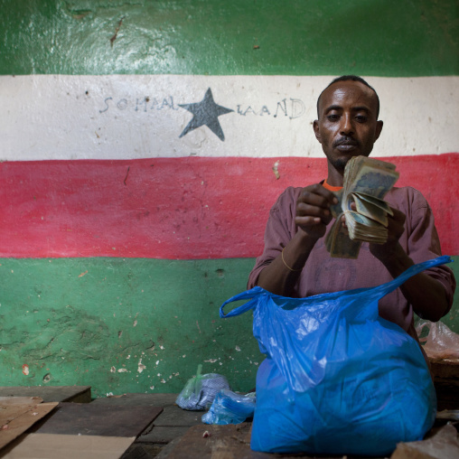 Man counting banknotes in front of the somaliland flag, Hargeisa, Somaliland