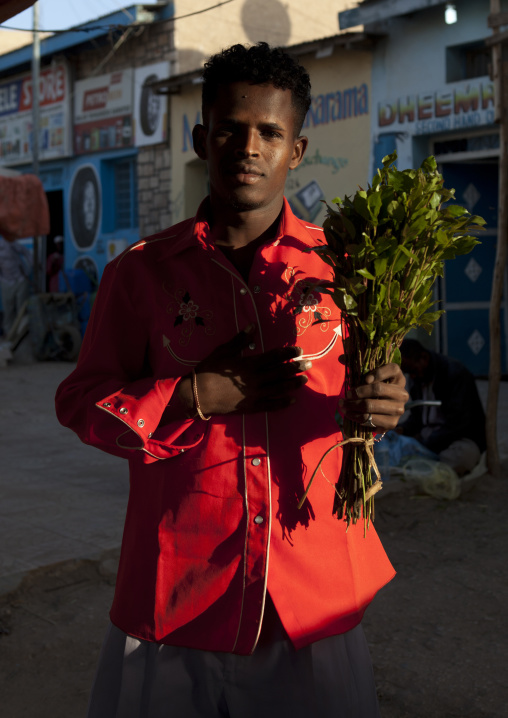 A man holding a branch of khat in hand on the street, Hargeisa, Somaliland