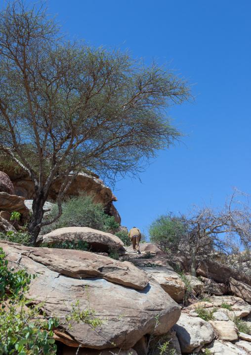 Landscape of the las geel area, Woqooyi galbeed region, Hargeisa, Somaliland