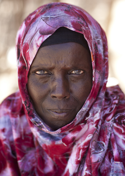 Portrait of a mature woman wearing a pink hijab, Lasadacwo village, Somaliland