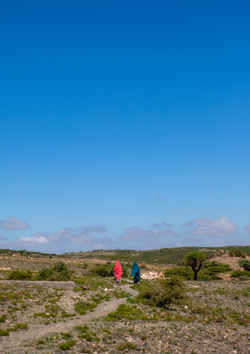 Somali women in sheikh mountains, Togdheer, Sheikh, Somaliland