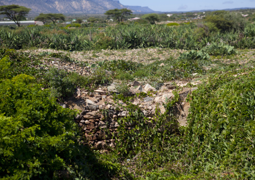 Ruins in the nature in sheikh hussein, El sheikh, Somaliland
