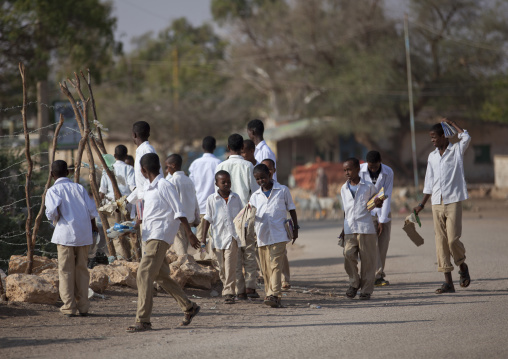 Shoolboys wearing their school uniform and carrying their books passing by a street, Burao, Somaliland