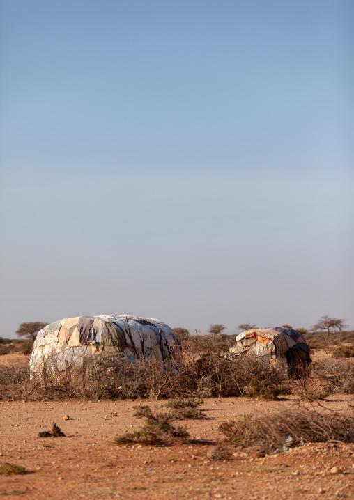 A somali hut called aqal, Woqooyi galbeed province, Baligubadle, Somaliland