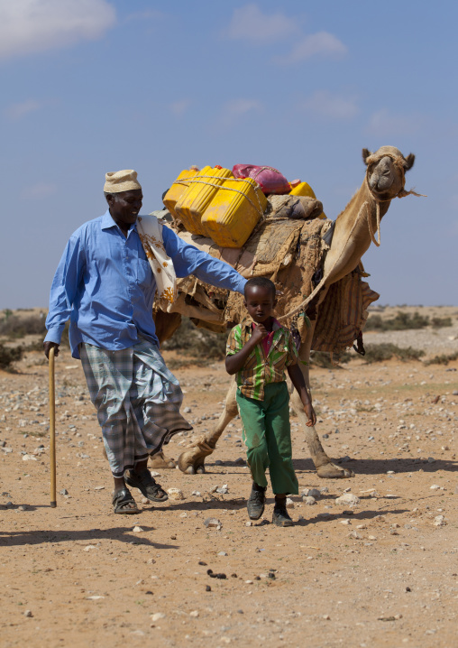 A man and a youngster transporting water in yellow containers through the desert on a camel back, Degehabur area, Somaliland